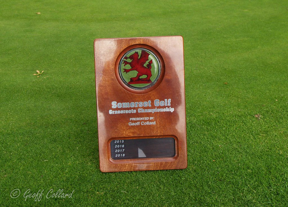somerset grassroots trophy