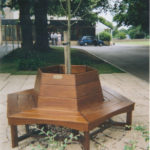 iroko tree seat at king edwards school bath