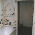 painted bathroon shelves