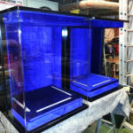 trophy Cabinets for Bath Rugby