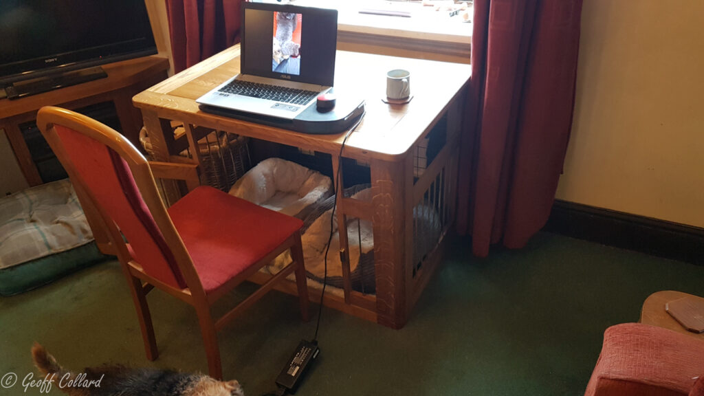 Solid oak dog cage come desk with hexagonal brass bars -
